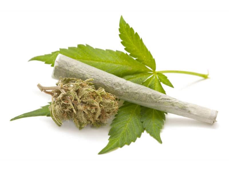Weed Cannabis Rehab Centre India
